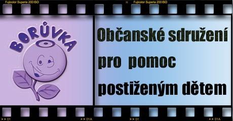 Borůvka, Borovany – nezisková organizace, poskytující sociální služby těžce tělesně a zdravotně postiženým a seniorům